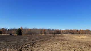 Photo 16: #3-51227 RGE RD 270 Road: Rural Parkland County Rural Land/Vacant Lot for sale : MLS®# E4133466