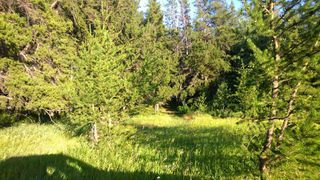 Photo 10: #3-51227 RGE RD 270 Road: Rural Parkland County Rural Land/Vacant Lot for sale : MLS®# E4133466