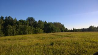Photo 9: #3-51227 RGE RD 270 Road: Rural Parkland County Rural Land/Vacant Lot for sale : MLS®# E4133466