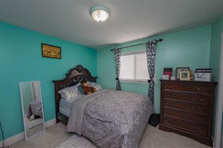 Photo 13: 4204 33 Avenue in Edmonton: Zone 29 House for sale : MLS®# E4149934