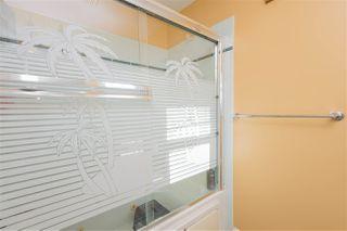 Photo 20: 4204 33 Avenue in Edmonton: Zone 29 House for sale : MLS®# E4149934