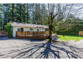Photo 16: 3905 208 STREET in Langley: Brookswood Langley House for sale : MLS®# R2361826