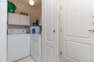 Photo 14: 101 1217 Pandora Avenue in VICTORIA: Vi Downtown Condo Apartment for sale (Victoria)  : MLS®# 410789