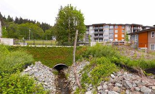 """Photo 13: 302 3911 CATES LANDING Way in North Vancouver: Roche Point Condo for sale in """"CATES LANDING"""" : MLS®# R2378433"""