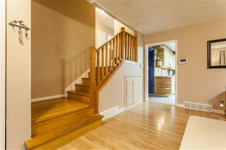 Photo 9: 15914 92A Avenue in Edmonton: Zone 22 House for sale : MLS®# E4179123