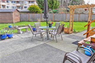 Photo 20: 4081 Larchwood Dr in Saanich: SE Lambrick Park House for sale (Saanich East)  : MLS®# 836922