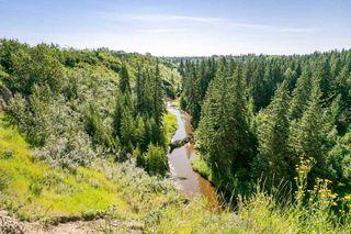 Photo 45: 1144 Saddleback Road in Edmonton: Zone 16 Carriage for sale : MLS®# E4208535