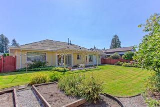 Photo 15: 20471 124A Avenue in Alvera Park: Home for sale : MLS®# R2104707