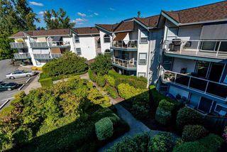 "Photo 21: 320 27358 N 32 Avenue in Langley: Aldergrove Langley Condo for sale in ""Willow Creek Estates"" : MLS®# R2522636"