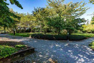 "Photo 31: 320 27358 N 32 Avenue in Langley: Aldergrove Langley Condo for sale in ""Willow Creek Estates"" : MLS®# R2522636"