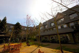 """Photo 1: 116 8888 202ND Street in Langley: Walnut Grove Condo for sale in """"LANGLEY GARDENS"""" : MLS®# F1201145"""