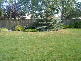 Photo 7: 55 Willow Avenue East in Oakbank: Single Family Detached for sale : MLS®# 1218296