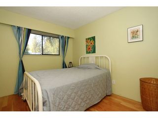 Photo 13: 925 MAYWOOD AV in Port Coquitlam: Lincoln Park PQ House for sale : MLS®# V1036749