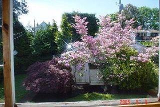 Photo 6: 3828 W 22ND AV in Dunbar: Home for sale : MLS®# V537093