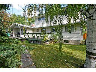 Photo 8: 39 LAKE SUNDANCE Place SE in CALGARY: Lake Bonavista Residential Detached Single Family for sale (Calgary)  : MLS®# C3635850