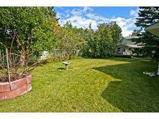 Photo 4: 39 LAKE SUNDANCE Place SE in CALGARY: Lake Bonavista Residential Detached Single Family for sale (Calgary)  : MLS®# C3635850
