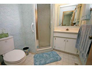 Photo 17: 39 LAKE SUNDANCE Place SE in CALGARY: Lake Bonavista Residential Detached Single Family for sale (Calgary)  : MLS®# C3635850