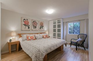 "Photo 9: 210 2125 W 2ND Avenue in Vancouver: Kitsilano Condo for sale in ""Sunny Lodge"" (Vancouver West)  : MLS®# R2000365"