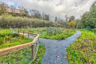 """Photo 16: 411 2242 WHATCOM Road in Abbotsford: Abbotsford East Condo for sale in """"WATERLEAF"""" : MLS®# R2016887"""