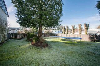 Photo 12: 985 SMITH Avenue in Coquitlam: Central Coquitlam House for sale : MLS®# R2033159