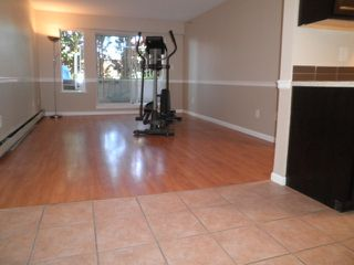 Photo 5: 105 22661 LOUGHEED Highway in Maple Ridge: East Central Condo for sale : MLS®# R2076851