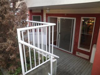 Photo 11: 105 22661 LOUGHEED Highway in Maple Ridge: East Central Condo for sale : MLS®# R2076851