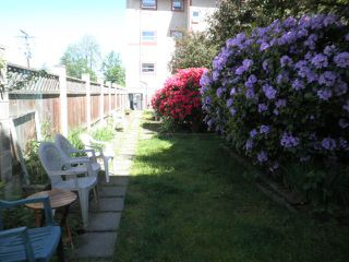 Photo 12: 105 22661 LOUGHEED Highway in Maple Ridge: East Central Condo for sale : MLS®# R2076851