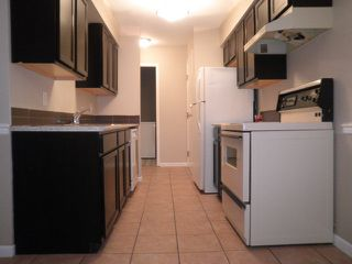 Photo 2: 105 22661 LOUGHEED Highway in Maple Ridge: East Central Condo for sale : MLS®# R2076851