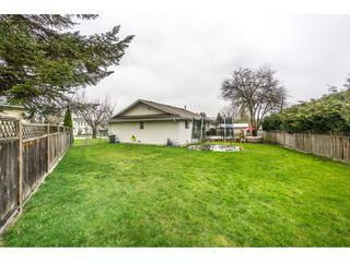 "Photo 19: 17346 60A Avenue in Surrey: Cloverdale BC House for sale in ""WEST CLOVERDALE"" (Cloverdale)  : MLS®# R2148162"