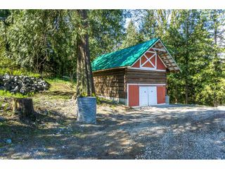 Photo 19: 4493 TOWNLINE Road in Abbotsford: Bradner House for sale : MLS®# R2158453