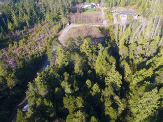 Photo 5: 264 Seabird Way in Bamfield: East Village Land for sale : MLS®# 425308