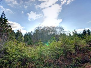 Photo 2: 264 Seabird Way in Bamfield: East Village Land for sale : MLS®# 425308