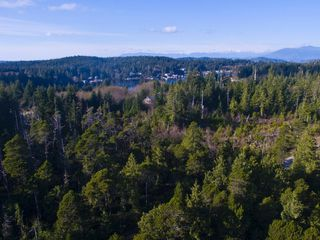 Photo 3: 264 Seabird Way in Bamfield: East Village Land for sale : MLS®# 425308
