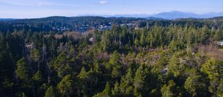 Photo 4: 264 Seabird Way in Bamfield: East Village Land for sale : MLS®# 425308