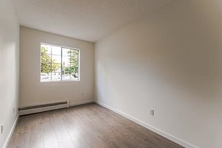 "Photo 10: 101 707 EIGHTH Street in New Westminster: Uptown NW Condo for sale in ""THE DIPLOMAT"" : MLS®# R2208182"