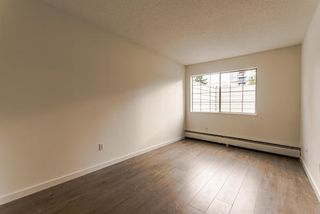 "Photo 7: 101 707 EIGHTH Street in New Westminster: Uptown NW Condo for sale in ""THE DIPLOMAT"" : MLS®# R2208182"