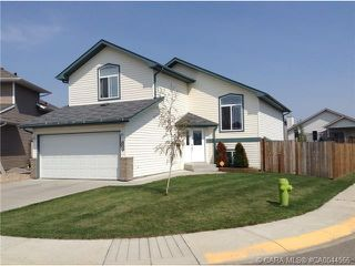 Photo 9: 104 OLDRING Crescent in Red Deer: RR Oriole Park West Residential for sale : MLS®# CA0044566
