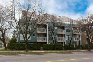 Photo 6: 202 2815 YEW Street in Vancouver: Kitsilano Condo for sale (Vancouver West)  : MLS®# R2255235