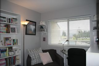 Photo 14: 309 3063 Immel Street in Abbotsford: Condo for sale : MLS®# R2257428