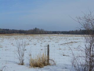 Photo 7: 5422A Twp Rd 522: Rural Parkland County Rural Land/Vacant Lot for sale : MLS®# E4107341