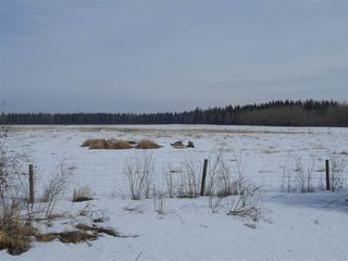 Photo 5: 5422A Twp Rd 522: Rural Parkland County Rural Land/Vacant Lot for sale : MLS®# E4107341
