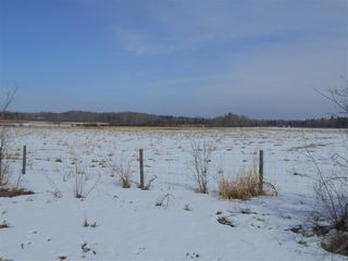 Photo 6: 5422A Twp Rd 522: Rural Parkland County Rural Land/Vacant Lot for sale : MLS®# E4107341