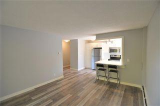 Photo 6: 403 828 4A Street NE in Calgary: Renfrew Apartment for sale : MLS®# C4205674
