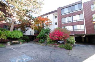 "Main Photo: 210 8740 NO. 1 Road in Richmond: Boyd Park Condo for sale in ""Apple Green"" : MLS®# R2316821"