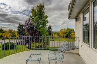Photo 34: 9009 SASKATCHEWAN Drive in Edmonton: Zone 15 House for sale : MLS®# E4152434