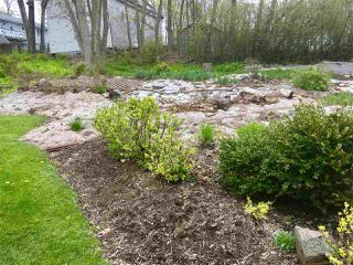 Photo 9: 16 Patterson Street in Pictou: 107-Trenton,Westville,Pictou Vacant Land for sale (Northern Region)  : MLS®# 201911977