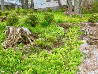 Photo 7: 16 Patterson Street in Pictou: 107-Trenton,Westville,Pictou Vacant Land for sale (Northern Region)  : MLS®# 201911977