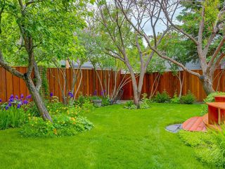 Photo 49: 423 36 Street SW in Calgary: Spruce Cliff Detached for sale : MLS®# C4255091