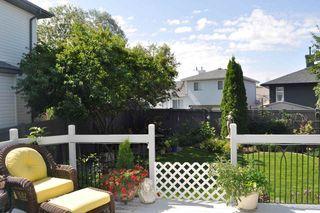Photo 33: 17220 113B Street in Edmonton: Zone 27 House for sale : MLS®# E4180708