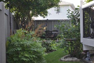 Photo 30: 17220 113B Street in Edmonton: Zone 27 House for sale : MLS®# E4180708